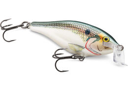Shallow Shad Rap®