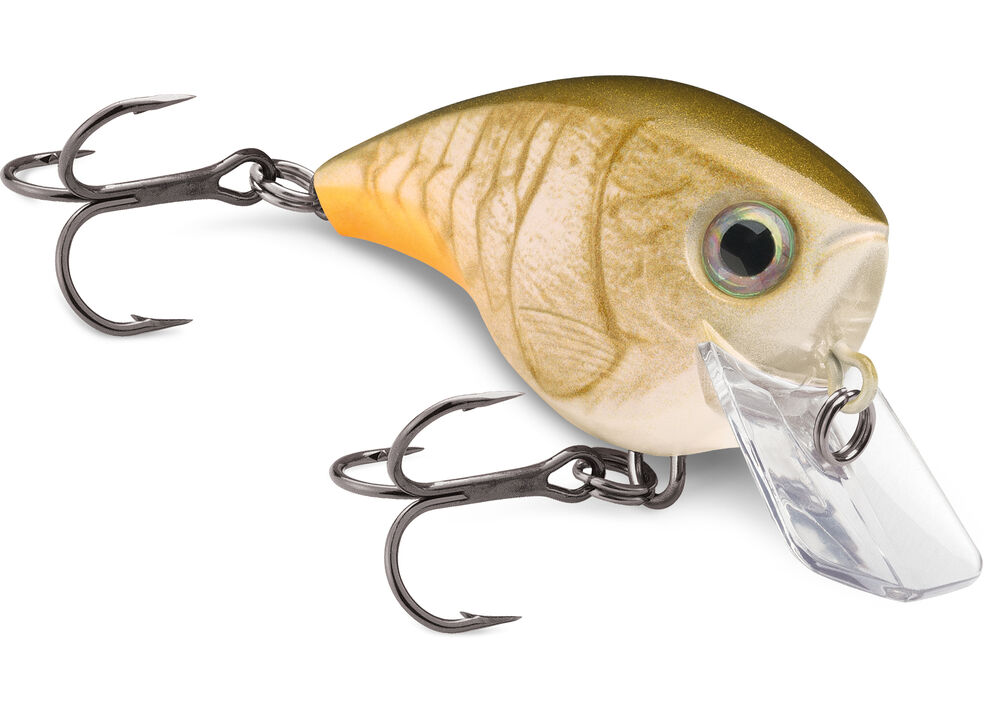 Rapala BX Lures