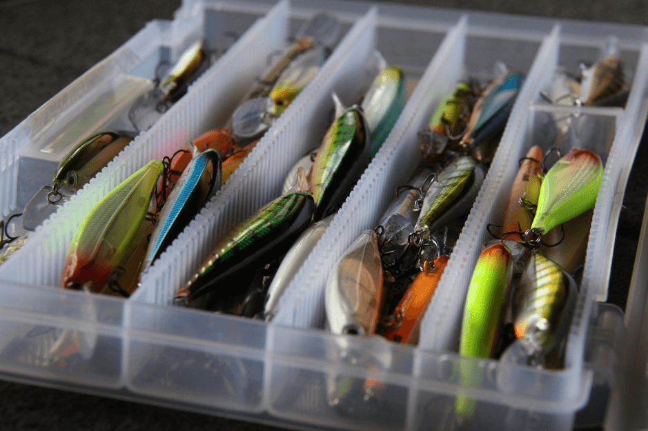 Perch Tackle Talk, Rapala Shadow Rap