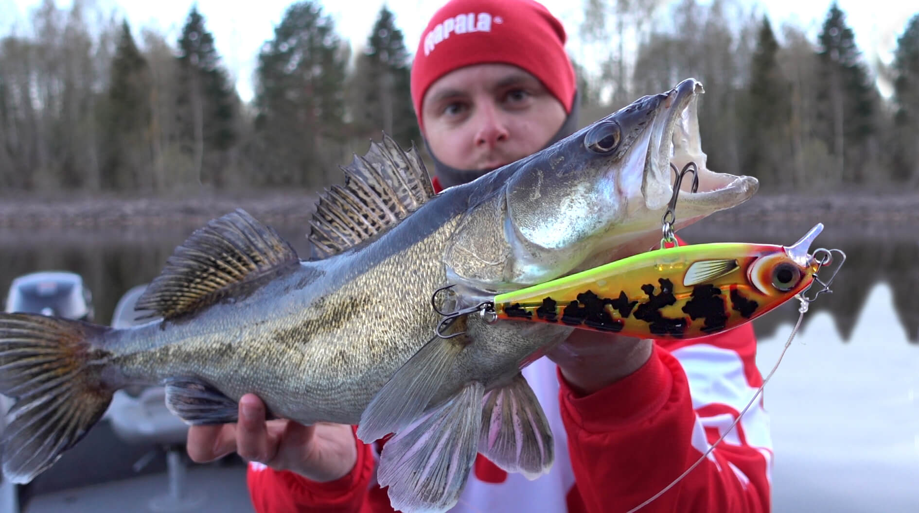 Big pike lures for Zander