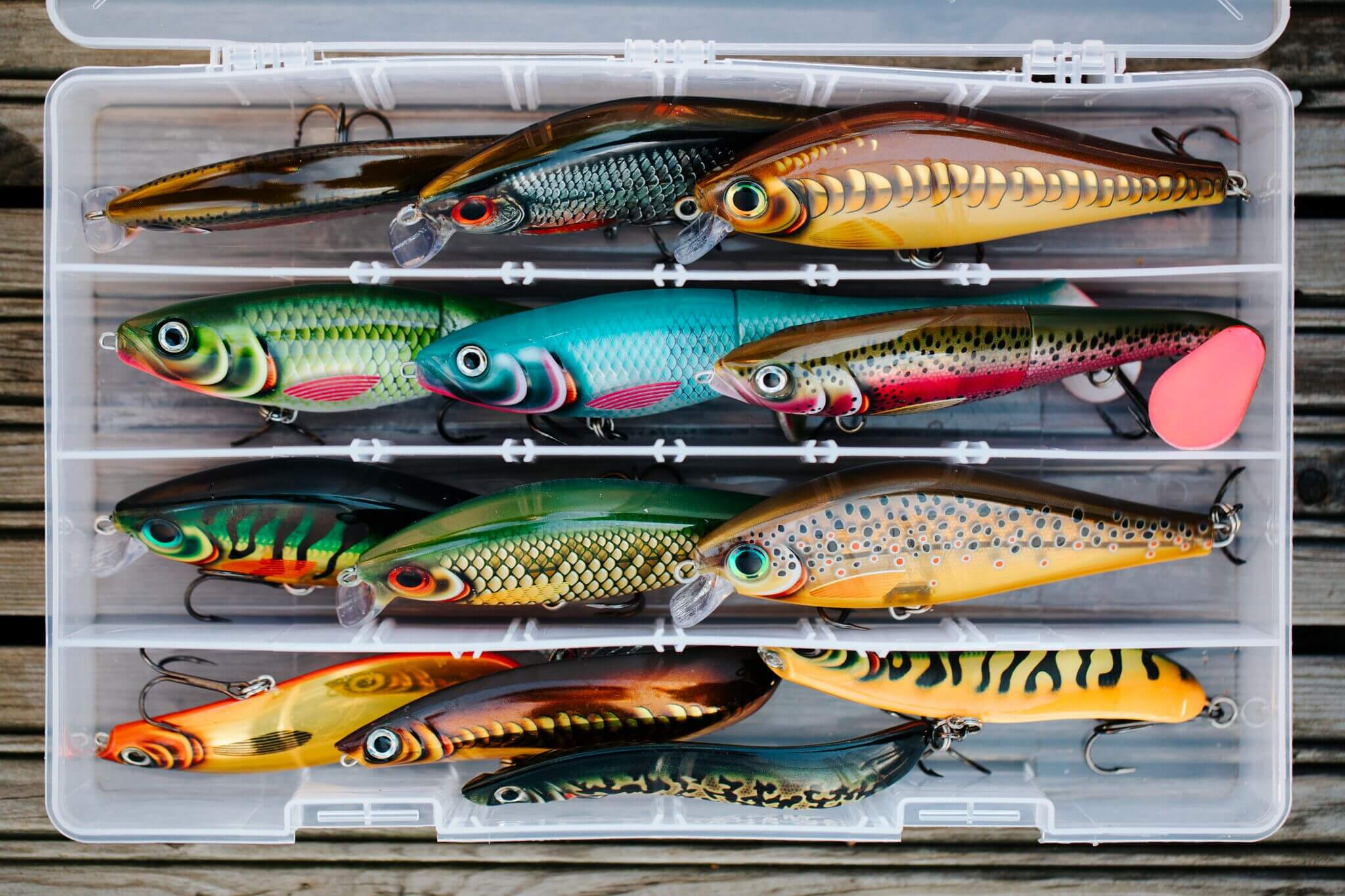 Fill Your Pike Box With Our Best Baits