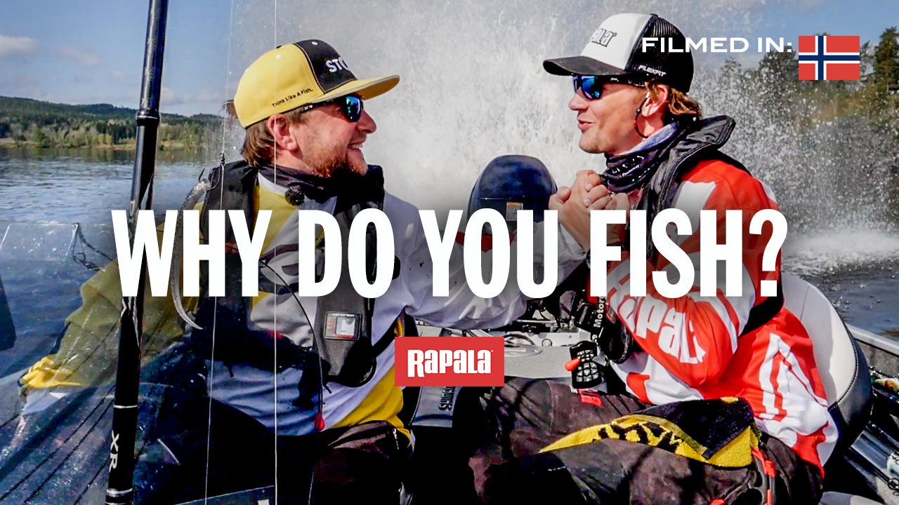 Why do you fish?