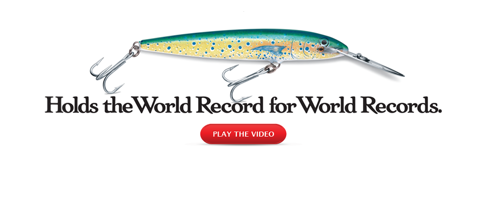 Holds The World Record For World Records. Play The Video