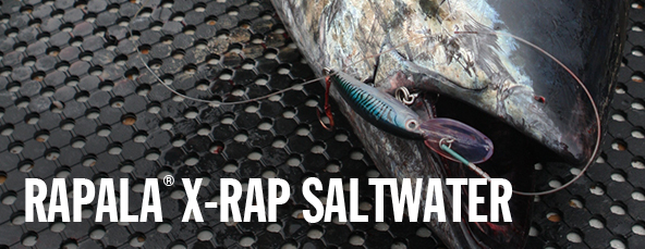 Official Williamson® Lures USA Site | Saltwater Fishing