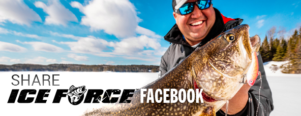 ICE FORCE Facebook