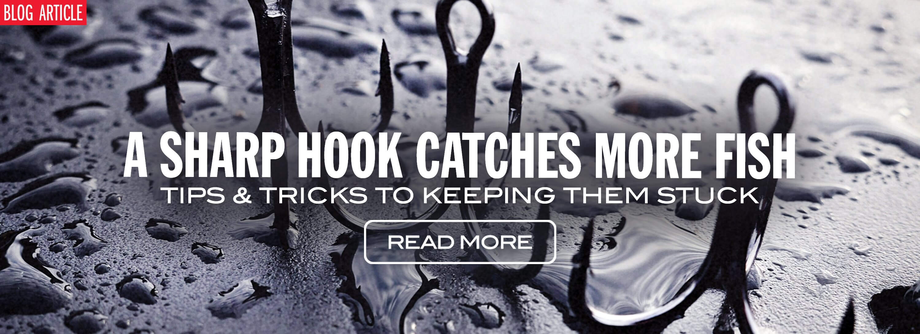 A Sharp Hook Catches More Fish